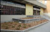Urban agriculture springs up inHochelaga